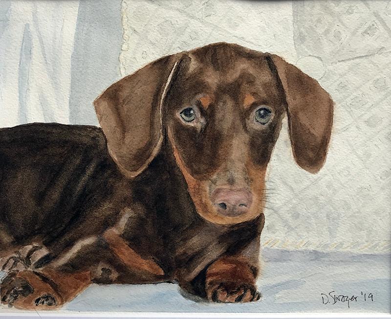 DK Schulman Dog Portraits